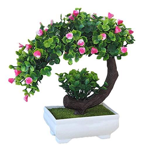 22 cm Blumen Bonsai Sockel Untersetzer Holz China