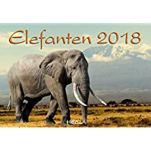 elefanten 2018