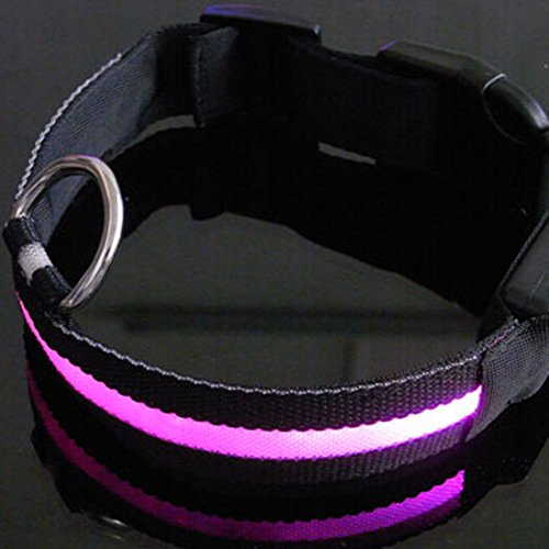 Hundehalsband mit 3Modus Hund Leine LED Sicherheit Hundehalsband Blinklicht bis Glow mit dünn Lite Up Strip