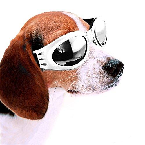 Lesypet-Weiss gestaltete Hundewelpen UV-Schutzbrillen Sonnenbrillen Brillen Pet Sun Glasses, Halb