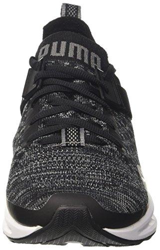 Puma Ignite Evoknit Lo, Chaussures de Running Compétition Homme Noir (Black-blue Danube-quiet Shade)