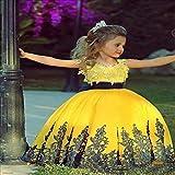 Peggy Gu Traje de Cosplay Princesa Vestido de Boda de la Falda de la Muchacha de Flor del cordón del Hombro del cordón de Qi de la Ropa de los niños Fiesta Elegante (tamaño : 4-5T)