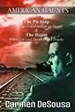 The Pit Stop: This Stop Could be Life or Death (American Haunts Book 0) (English Edition)