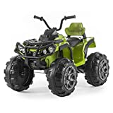 The BIG ATV 12v Kids Electric Beach Quad Bike is the new style, drive around in luxury on this stylish beach quad packed full of amazing features. Our 12v electric beach quad is one of the first quad bikes to now feature an MP3 function so you can no...