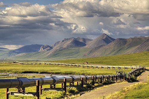 Lucas Payne / Design Pics – Semi truck driving the Haul Road (James Dalton Highway) along the Trans Alaska Oil Pipeline on the North Side of Atigun Pass in the Brooks Range Arctic Alaska Summer Photo Print (48,26 x 30,48 cm) (Trans-alaska-pipeline Brooks Range)