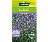 """Dehner Kräuter-Saatgut, Lavendel, """"Lavendula officinales"""", 1er pack)"""
