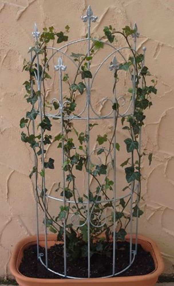 50/Holz Bambus Pflanze Sticks 40/cm Garten Zuckerstangen Pflanzen unterst/ützung Flower Spazierstock