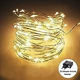 Außen LED Lichterkette, FisherMo 'Silver Wire' Wasserdicht Sternen Lichterketten 5V USB Powered 100 WarmWeiß LEDs Licht für Weihnachten Hochzeit Party Garten Innen