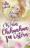K(ein) Chihuahua zu Ostern: Das Geschenk das alles ändert