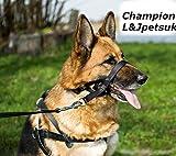 Anti-Zieh-Trainings-Halfter für Hunde, gepolstert