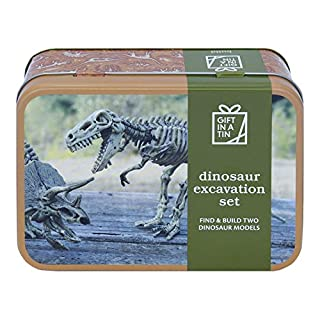 Apples to Pears Dinosaur Excavation Kit