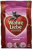 Wahre Liebe Sensible Katze