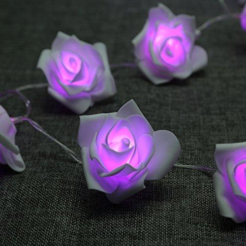 Denknova® 20er LED Rosen Lichterkette, batteriebetrieben, Lila, 2 - Lila