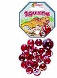 Kim'Play - 500824 - Jeu de Plein Air - 20 Billes  +  1 Calots -  Iguane