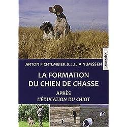 La formation du chien de chasse: Après L'éducation du chiot.