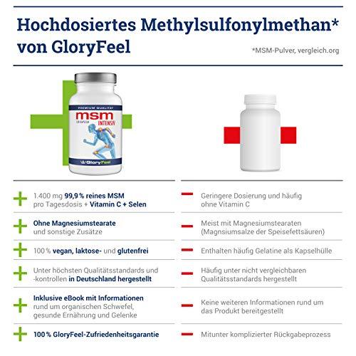 MSM Kapseln Intensiv 1.600-1600mg Organischer Schwefel Pulver pro Tagesdosis – 120 Vegane Kapsel – Laborgeprüft und ohne unerwünschte Zusätze hergestellt in Deutschland