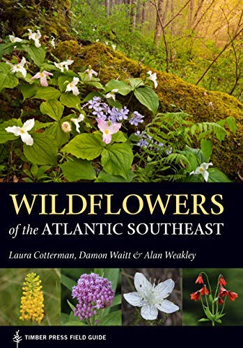 Wildflowers of the Atlantic Southeast (A Timber Press Field Guide) (English Edition)