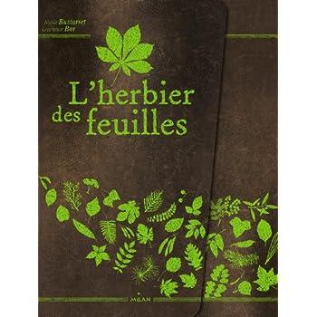 Herbier Feuilles - NE