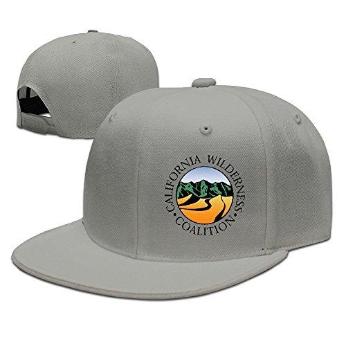 hittings-california-wilderness-coalition-new-summer-snapback-hats-plain-caps-ash