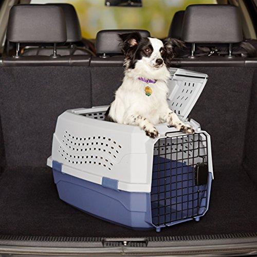 AmazonBasics Transportbox für Haustiere, 2 Türen, 1 Dachöffnung, 58cm - 2