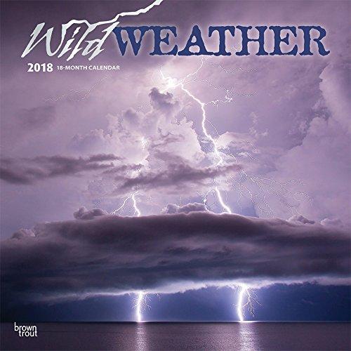 Wild Weather 2018 Wall Calendar
