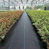 Piantagione di piante per il controllo delle erbacce - Barriera erbaccia per copertura suolo - Ecologica per il paesaggio di orto,controllo dell'erosione suolo e stabilizzato ai raggi UV - 500 m²