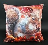 Design Kissenhülle mit hochwertigem Fotodruck Digitaldruck auf super weicher Velour Qualität in 40x40 cm mit Reißverschluß - Eichhörnchen - Kissen Herbst Wald Fliegenpilz Typ324