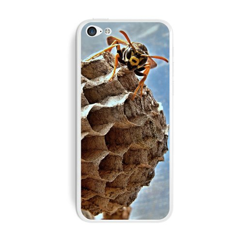 graphics-and-more-bee-wasp-hornet-and-nest-hive-protective-skin-sticker-case-for-apple-iphone-5c-set
