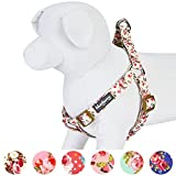 Blueberry Pet Step-In Hundegeschirr Frühlingsduft Inspiriertes Pinke Rosen Muster Elfenbeinfarben Hundegeschirr mit Zugentlastung Verstellbar, Nylon 42-54cm Brust
