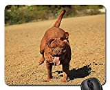 Gaming-Mauspads, Mäusematte, Bordeauxdogge Dog Mastiffs Animal French 3