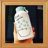 JINSANSHUN Neumodisch Tragbare 500ml Cute Obst Cups Trinkflaschen Isolierflasche Thermoskanne Flasche Edelstahl Vakuumflasche Thermoflasche Kinder-Becher für Kinder - Blueberries