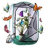 BOROK Pop Up Farfalle coltivare insetti farfalla Farm per allevamento insetti farfalla di rete rete aufzuchv oliere giocattolo educativo