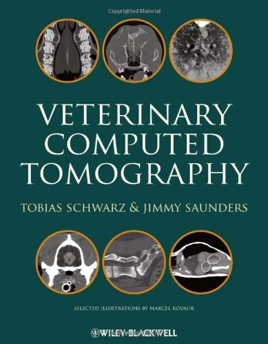 Veterinary Computed Tomography (September 30, 2011) Hardcover