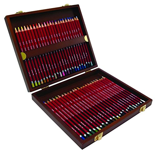 derwent-pastel-matite-a-pastello-in-scatola-di-legno-confezione-da-48