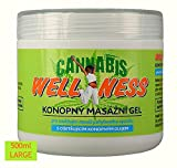 HEMP GEL for Pain Relief 500ml | Anti Inflammatory Soothing Muscle and Joint