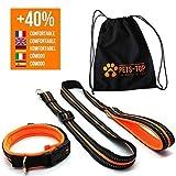 One PETS-TOP Hundehalsband + Leine für kleine und große Hunde, reflektierend, orange, Gurt aus Nylon