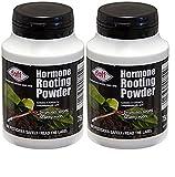2x Doff® Hormon Wurzel-Pulver 75g–Hilft neuen Wurzeln an Stecklingen zu bilden und fördert starke gesunde Wurzeln