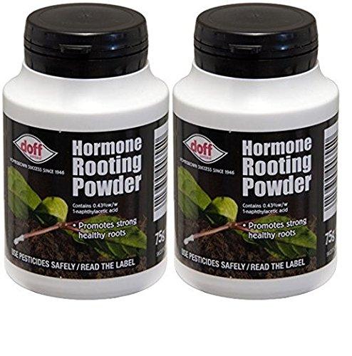 2x Doff® Poudre d'hormones d'enracinement 75g–aide à New racines sur boutures et favorise la racines sain et fort