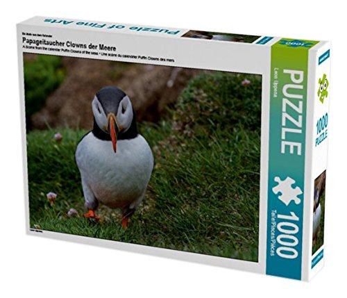 Ein Motiv aus dem Kalender Papageitaucher Clowns der Meere 1000 Teile Puzzle quer (CALVEND Preisvergleich