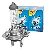 ECD Germany 2er Pack Halogen Lampe H7 55W 4000K 12V mit E4 Zulassung Glühbirne Birne Glühlampe Scheinwerferlampe Autolampe