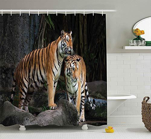 Animal Decor Duschvorhang Tiger Paar im Dschungel auf großen Felsen Bild Wild Cats in Nature Print Stoff Badezimmer Dekor Set mit180CM Extra Long Ginger Grey - Tiger-print-stoff