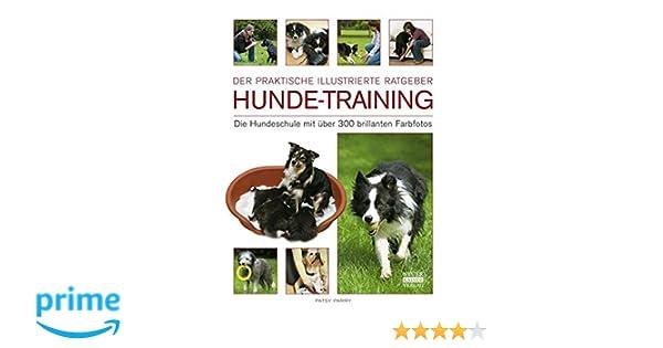 Hunde-Training: Die Hundeschule mit über 300 brillanten Farbfotos ...