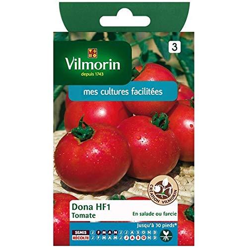 Vilmorin - Sachet graines Tomate Dona HF1