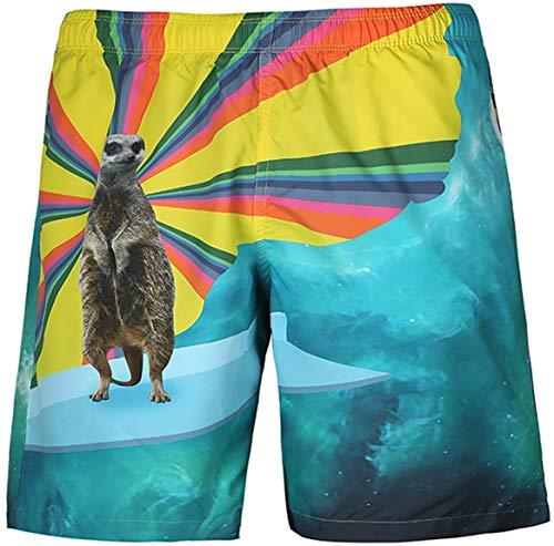 Ocean Plus Hombre Traje de Baño Verano Shorts de Playa Hawai Estampado de Playa Shorts Traje de Baño...