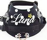 Hundegeschirr S M L XL XXL Brustgeschirr mit Wunsch Namen bestickt Schwarz Punkte