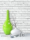 NEWROOM Steintapete Weiß Papiertapete Weiß Jung,Landhaus,Vintage Mauer,Natur,Stein schöne moderne und edle Design 3D Optik , inklusive Tapezier Ratgeber