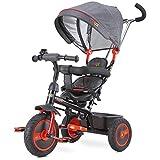 CARETERO Toyz Buzz Dreirad Kinderdreirad Dreiradfahrzeug Fahrrad mit abnehmbarer Schubstange, geräumigem Spielzeugkorb und Sonnendach., Farbe:Red