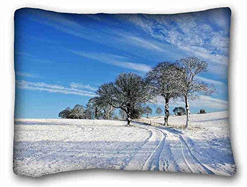 Custom (Tiere Katze Asphalt Road grünen Tour) Kissenbezüge Betten Zubehör Größe 50,8x 66cm geeignet für full-bed, Polyester-Mischgewebe, Muster 9, European