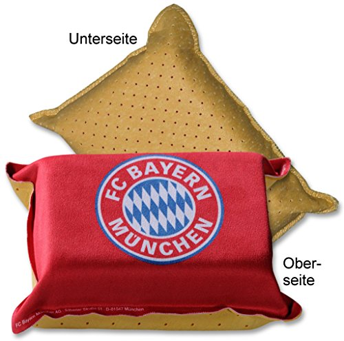 FC Bayern München Auto-Schwamm