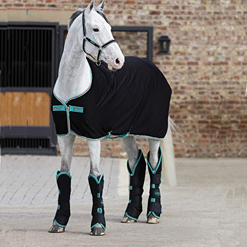 Horseware Amigo Jersey Cooler - Black/Teal & Dark Cherry